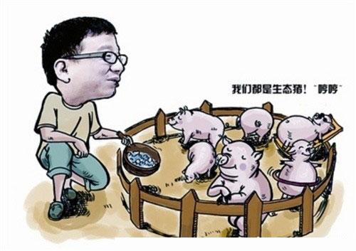丁磊养猪(钛媒体)