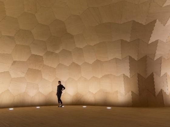 花生壳与蜂巢的混合体建筑