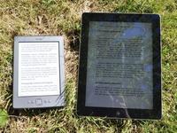 电子书市场增长趋缓背后的原因是什么?