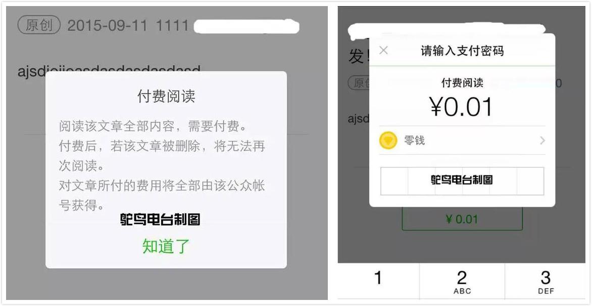 点开该文章,显示的界面如上,用户需要进入支付界面并且支付之后才能看到文章内容
