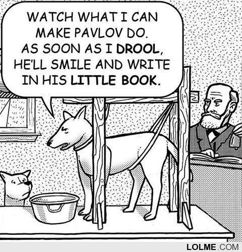 代码不再重要,未来我们要像训狗一样训练计算机