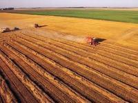 农村土地流转O2O:一种具有代表性的农村电商下乡模式