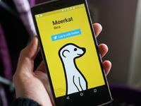 社交巨头阴影之下,Meerkat非死不可