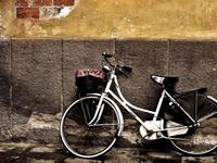 共享单车不是公益项目,想盈利要抓住这三个关键点