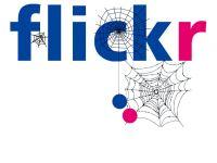 flickr是如何走向没落的?