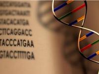 微软深耕DNA存储技术,新的存储时代或将到来