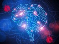 人类距离用生物芯片治愈瘫痪还有多远?