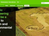 """诺奖得主联合致信绿色和平:""""黄金大米""""是好东西,不要再抵制转基因了"""